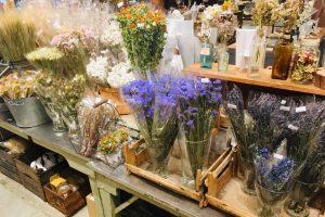 京都店のグリーンコーナーのご紹介* / mumokuteki goods&wears京都