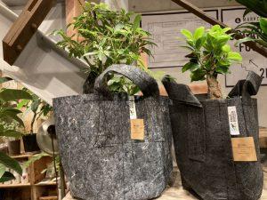 環境に優しい植木鉢『ルーツポーチ』のご紹介 / mumokuteki goods&wers京都
